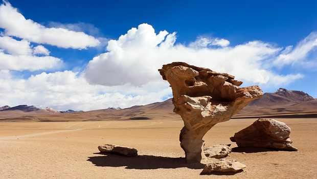 Stone tree, arbol de piedra in Uyuni, Bolivia