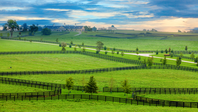 Scenic overlook of a horse farm in Central Kentucky