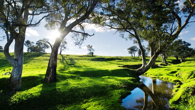 Adelaide Hills Landscape