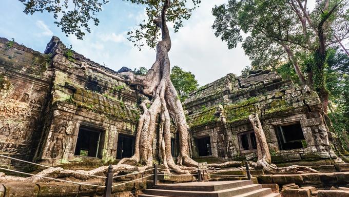 Classical picture of Ta Prohm Temple, Angkor, Cambodia.