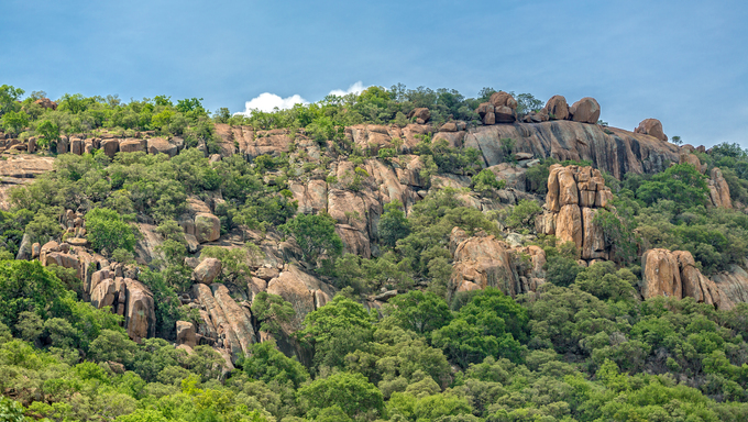 Lush green vegetation on the rocky hills at the outskirts of Gaborone, Botswana.