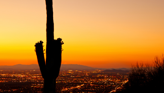 A beautiful golden sunset over the city lights of downtown Phoenix with a silhouette of a blooming Saguaro cactus in the foreground.
