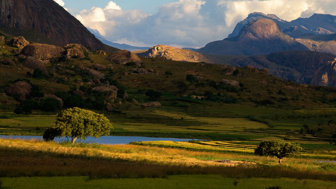 The Madagascan landscape.