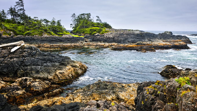 Rocky ocean shore in Pacific Rim National park, Canada.
