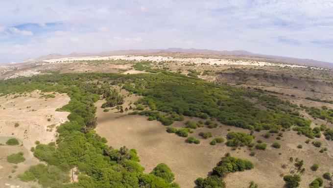 Aerial view -  Oasis near  Viana desert, Boavista - Cape Verde