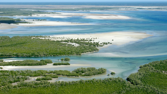 Aerial view of the shallow waters and forests on the tropical coast of Mozambique, Southern Africa.