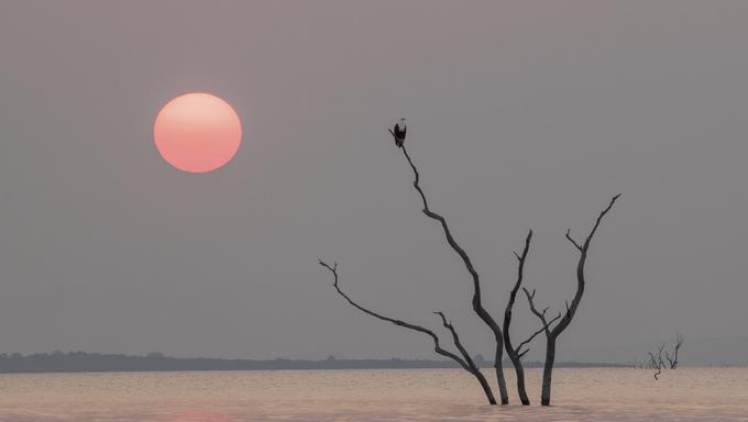 A scene from Lake Kariba.