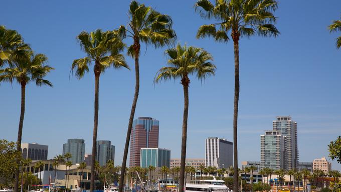 Long Beach California skyline with palm trees from marina port.