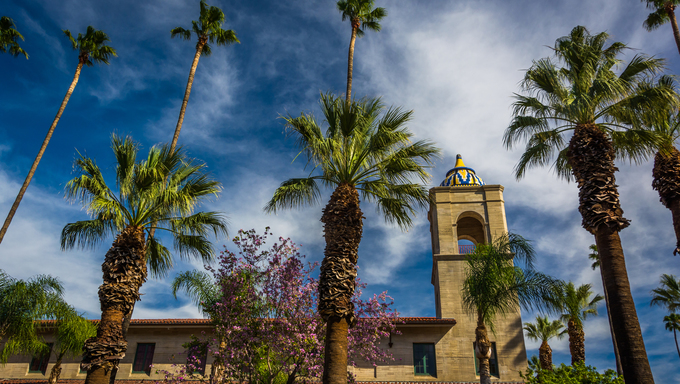 Palm trees and the Riverside Municipal Auditorium, in downtown Riverside, California.