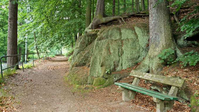 A park scene with a bench.