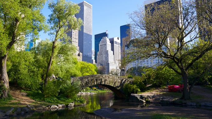 Central Park and Manhattan skyline, New York City.