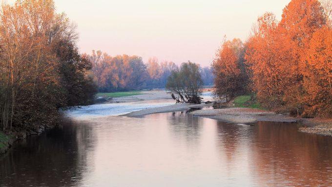 The Provo River.