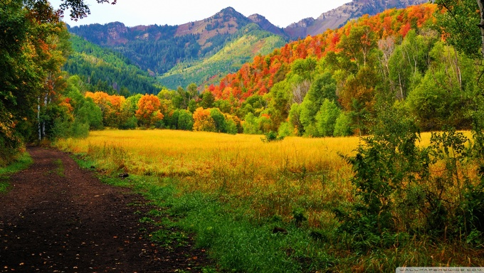 Provo Canyon in the Fall months.
