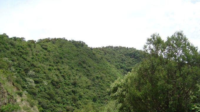 Zumpahuacán area natural