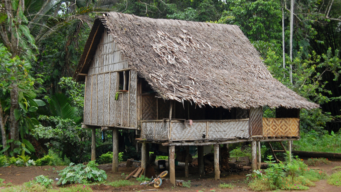 Village house in outback of Papua New Guinea