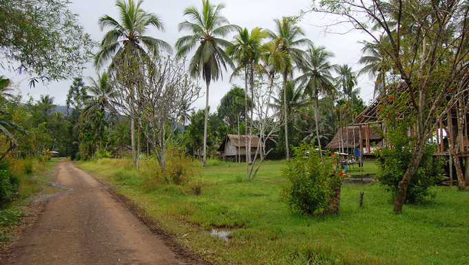 Small village in outback of Papua New Guinea
