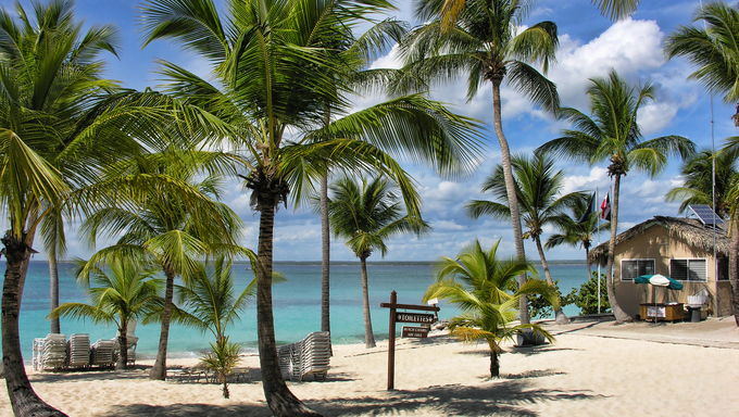 Detail of the Coast of Santo Domingo, Dominican Republic