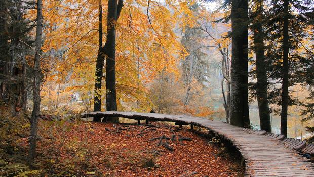 Croatia Plitvice Lakes National Park Autumn