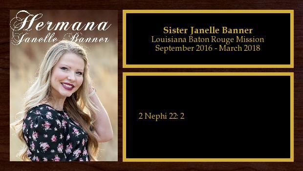 September 2016 to March 2018<br/>Sister Janelle Banner