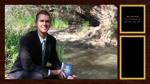 June 2015 to June 2017<br/>Elder Tanner  Melior