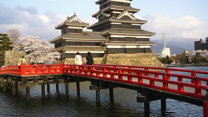 Matsumoto Castle in the Japanese Alps during Cherry Blossom (Sakura).