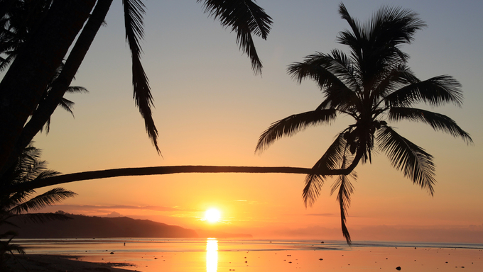 Sunset and palm trees on the beach in Fiji