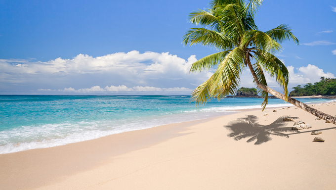 Desert island with a palm tree on the beach.