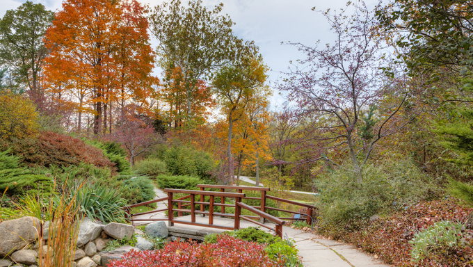 Beautiful fall scenery in the one of the city parks in Indianapolis, Indiana