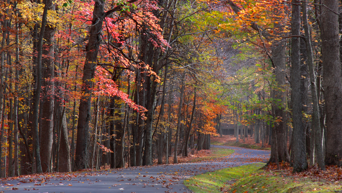 A scenic Autumn drive in Virginia.