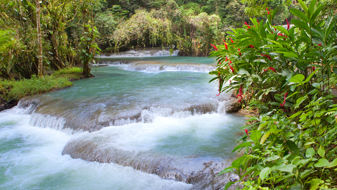 Jamaica. Dunn's River waterfalls.