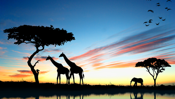 Safari in Africa, silhouettes of wild animals reflect in water.