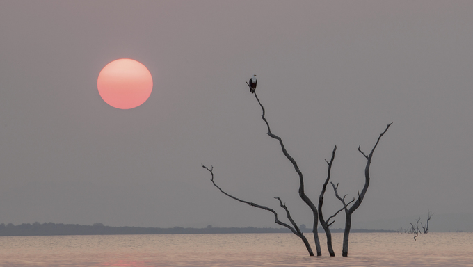 A scene from Lake Kariba.