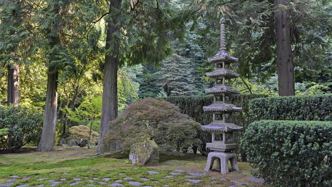 Japanese garden landscape.