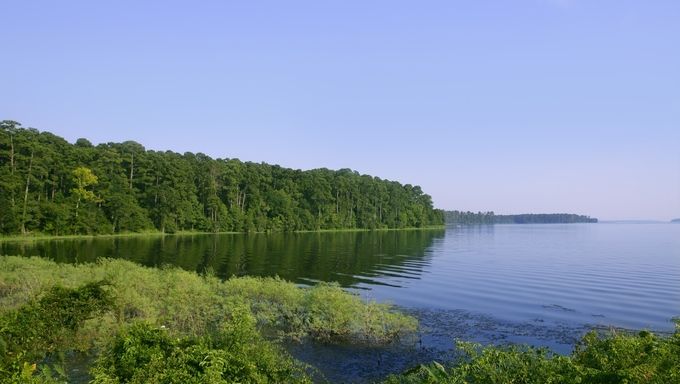 Blue lake landscape in a green Texas forest.