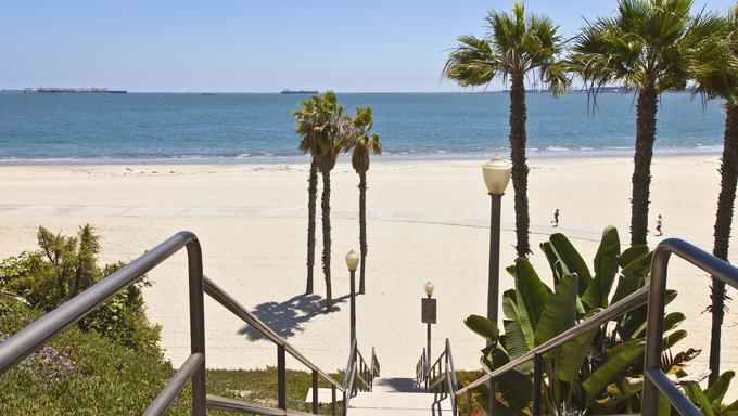 Long Beach California palms sand and ocean view.