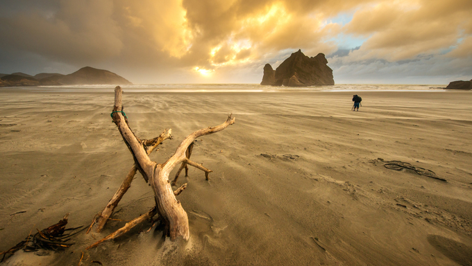 Wharaki beach, New Zealand.