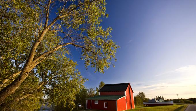 Old Barn Hecla Island Manitoba