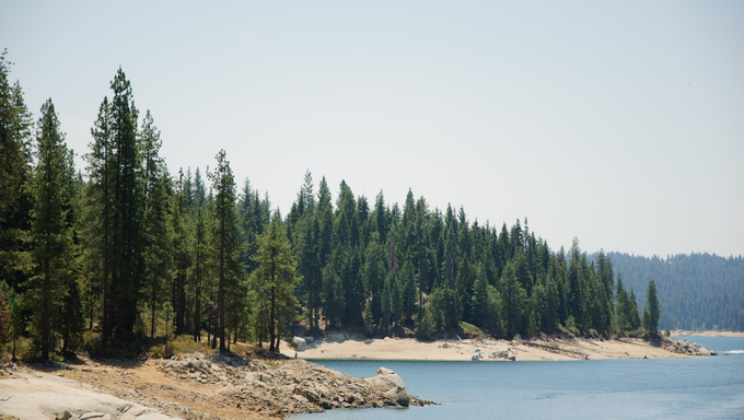 The shoreline of Shaver Lake, California