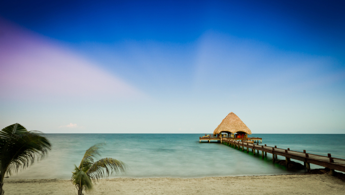 Tropical beach in Belize with clear blue water and palm trees.