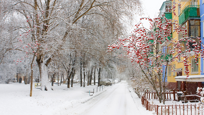 Winter in Academgorodok