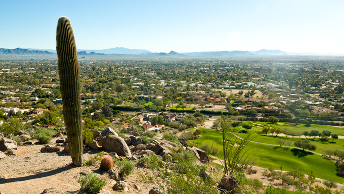 A Saguaro Cactus overlooking Mesa, Scottsdale, and Paradise Valley.