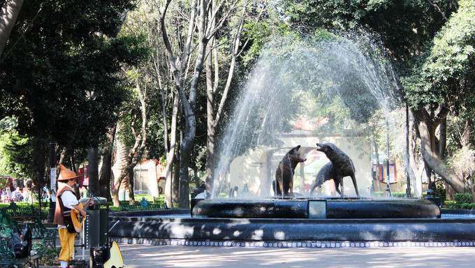 Fuente Coyoacán Ciudad de México