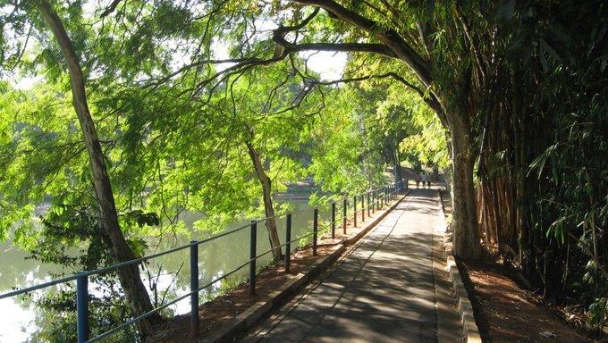A path found in the Parque Portugal located in Campinas.