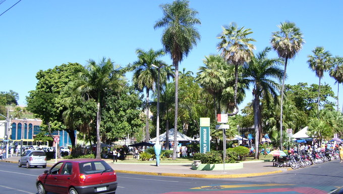 A street corner in Cuiaba surrounded by palm trees. Praca Ipiranga.