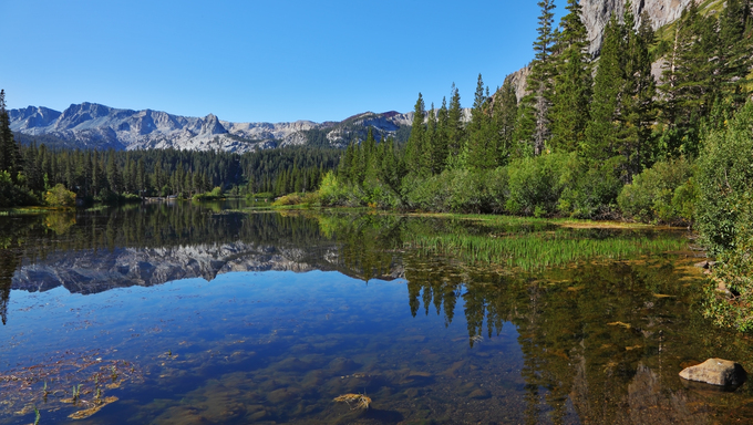The shallow ,quiet, blue Mammoth Lake, among mountains and pine forests.