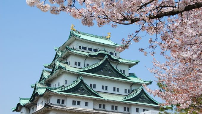 Nagoya Castle and a cherry blossom tree. Nagoya Castle is a fortification built in the beginning of the Edo period by the ruling Tokugawa family.