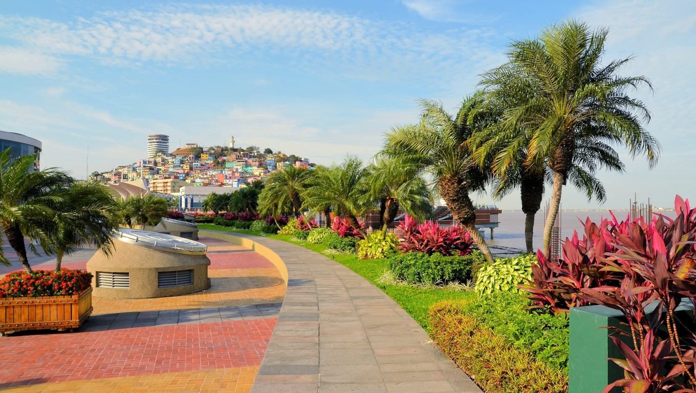 Garden seaside Malecon 2000 park and pedestrian walkway with Santa Ana Hill in background, Ecuador