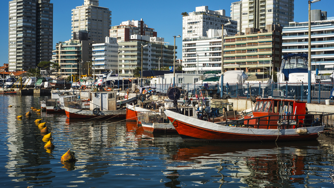 Fishing boats in Punta del Este Harbor.