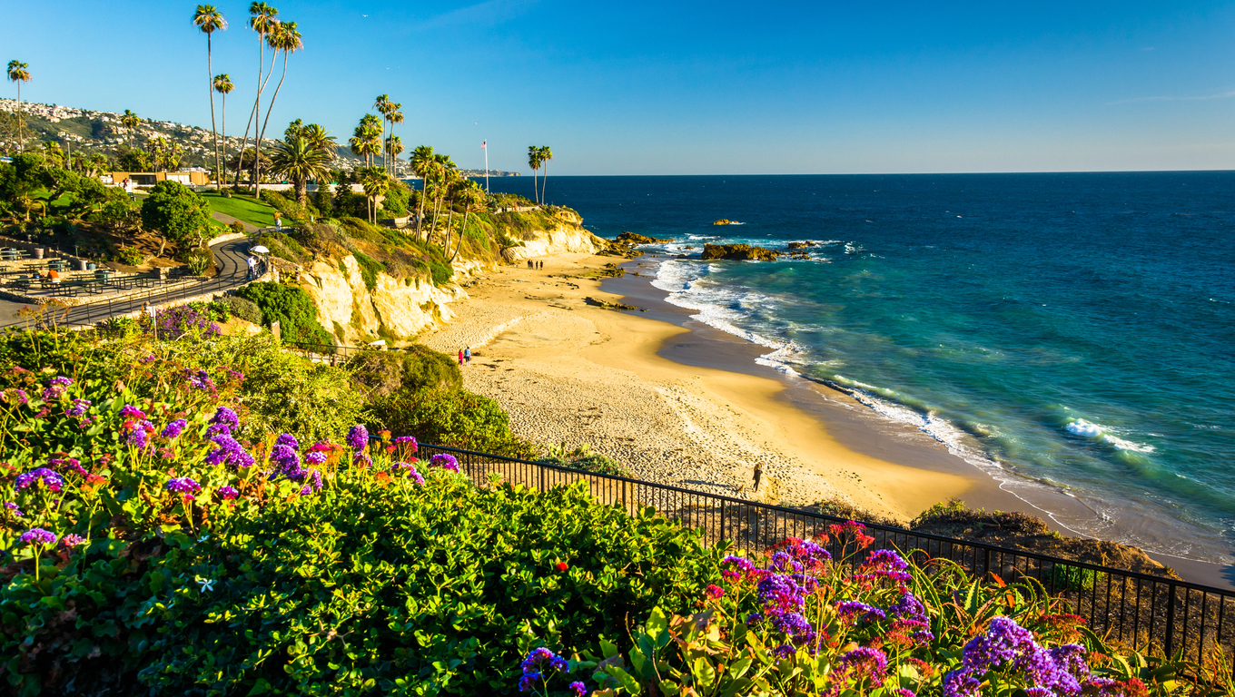 Flowers and view of the Pacific Ocean at Heisler Park, in Laguna Beach, California.