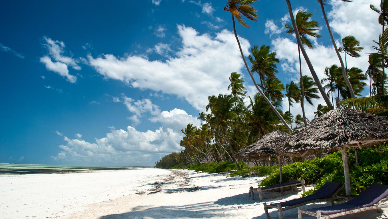 Beautiful beach of white sand in Matemwe, Zanzibar